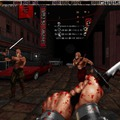 Shadow Warrior HD (23.3mb)